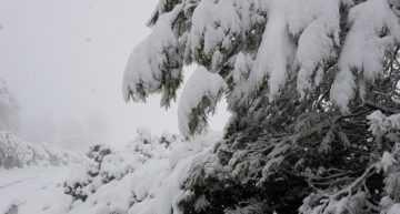 Fin de semana sin fútbol regional en Alcoy debido a la nieve