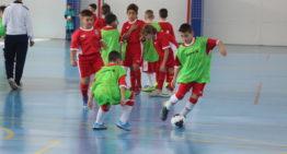 Calpe fue el epicentro del futsal FFCV este domingo con entrenamientos Sub-10, Sub-12 y Sub-14