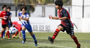 La FFCV pospone hasta el 15 de noviembre el arranque de las Ligas de fútbol-8 a excepción de Castellón